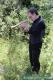 Il musicista Mario Fragiacomo con il suo<br />flicorno esegue non senza commozione il Silenzio e l&#39;Adio,